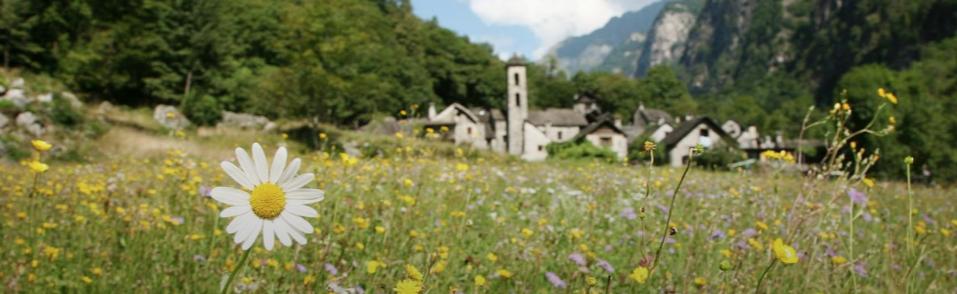 Domenica 30 agosto 2020 gita in  Val Bavona